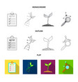isolated object of genetic and plant symbol vector image vector image
