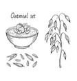 oats sketch oatmeal porridge bowl with milk vector image vector image