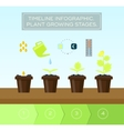 Plant growing set and infographic with icon head vector image vector image
