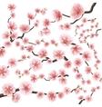 set sakura japan cherry branch eps 10 vector image