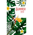 summer sale tropical design for template banner vector image