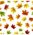 autumn pattern with maple leaves vector image vector image