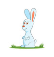 happy cartoon rabbit vector image vector image