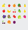 set colorful fruit icons vector image