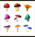 Set of beautiful cute cartoon coloured mushrooms vector image