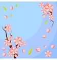 Almond or apricot flower branch Template for vector image