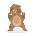 brown bear funny cartoon vector image vector image