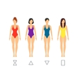 Cartoon Female Body Shape Types vector image vector image