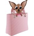 dog in a glamorous handbag vector image
