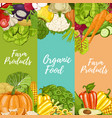 organic farm food flyers set vector image vector image