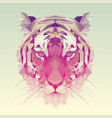polygonal tiger graphic design vector image vector image