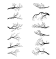set of tree branches vector image