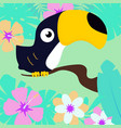 toucan on tropical background vector image vector image