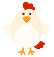 white chicken with cute face vector image vector image