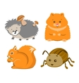 Cute Animal Squrrel Hedgehog Hamster Beetle vector image vector image