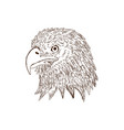 hand drawn eagle head vector image