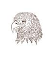 hand drawn eagle head vector image vector image