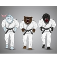 set of cartoon sports man-sharkman-bear and man vector image