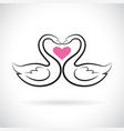 two loving swans and pink heart on white vector image vector image