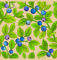 bilberry branches pattern vector image vector image