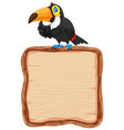board template with cute toucan on white vector image vector image