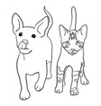 dog and cat line art 02 vector image vector image