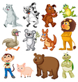Land animals vector image
