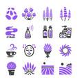 lavender icon vector image