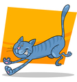 running tabby cat vector image vector image