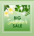 summer sale banner with exotic flowers and leaves vector image