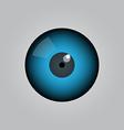 eye ball vector image