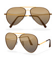 aviator sunglasses isolated on white dark brown vector image