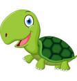 cute turtle cartoon vector image vector image