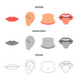 design of body and part icon set of body vector image