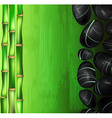 Green Spa Background with Hot Stones vector image