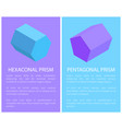 hexagonal and pentagonal prisms colorful banner vector image
