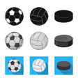 isolated object of sport and ball sign set of vector image vector image