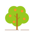 orange tree simple flat style icon vector image
