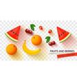 set realistic fruits and berries with shadow vector image
