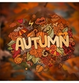 Autumn season hand lettering and doodles elements vector image vector image