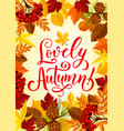 autumn season maple leaf and rowan berry poster vector image vector image