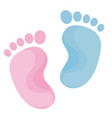 bafoot print blue and pink colors vector image