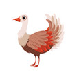 beautiful bird on a white vector image vector image