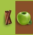 cinnamon and green apple vector image vector image