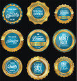 golden badges and labels retro premium collection vector image vector image
