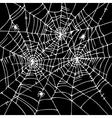 Halloween web background CCCVI vector image vector image