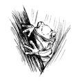 Hand sketch frogs vector image vector image