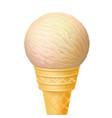 ice cream in the cone isolated vector image vector image