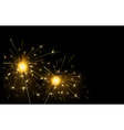 sparklers vector image