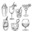 alcoholic cocktails sketch vector image vector image